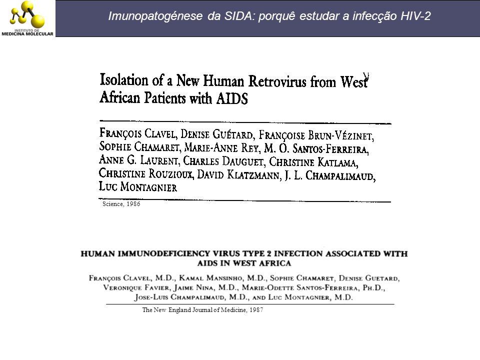Imunopatogénese da SIDA: porquê estudar a infecção HIV-2