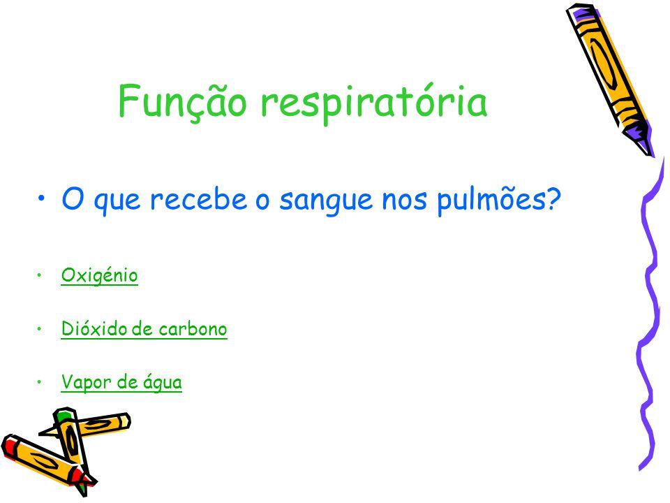Função respiratória O que recebe o sangue nos pulmões Oxigénio
