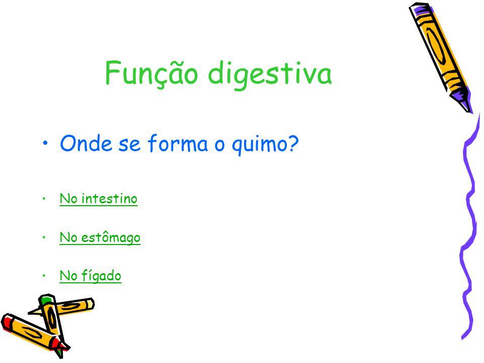 Função digestiva Onde se forma o quimo No intestino No estômago