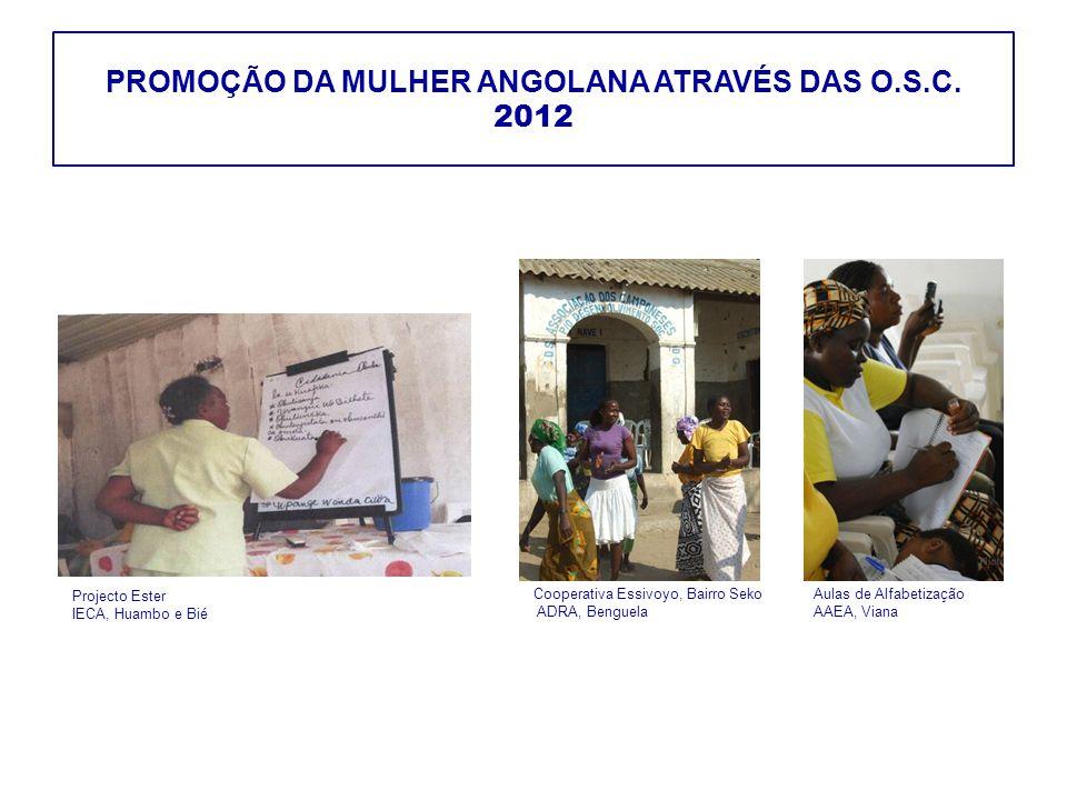 PROMOÇÃO DA MULHER ANGOLANA ATRAVÉS DAS O.S.C. 2012