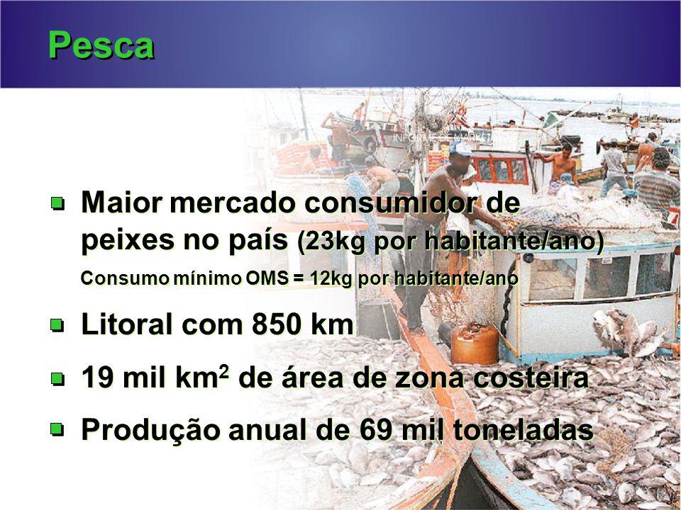 Pesca Maior mercado consumidor de peixes no país (23kg por habitante/ano) Consumo mínimo OMS = 12kg por habitante/ano.