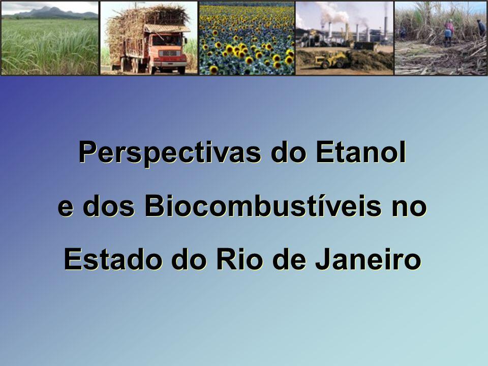 Perspectivas do Etanol e dos Biocombustíveis no