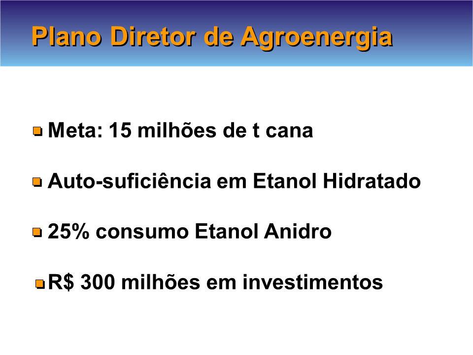 Plano Diretor de Agroenergia