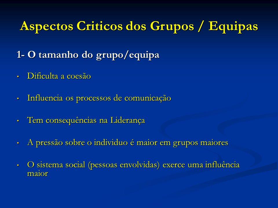 Aspectos Criticos dos Grupos / Equipas