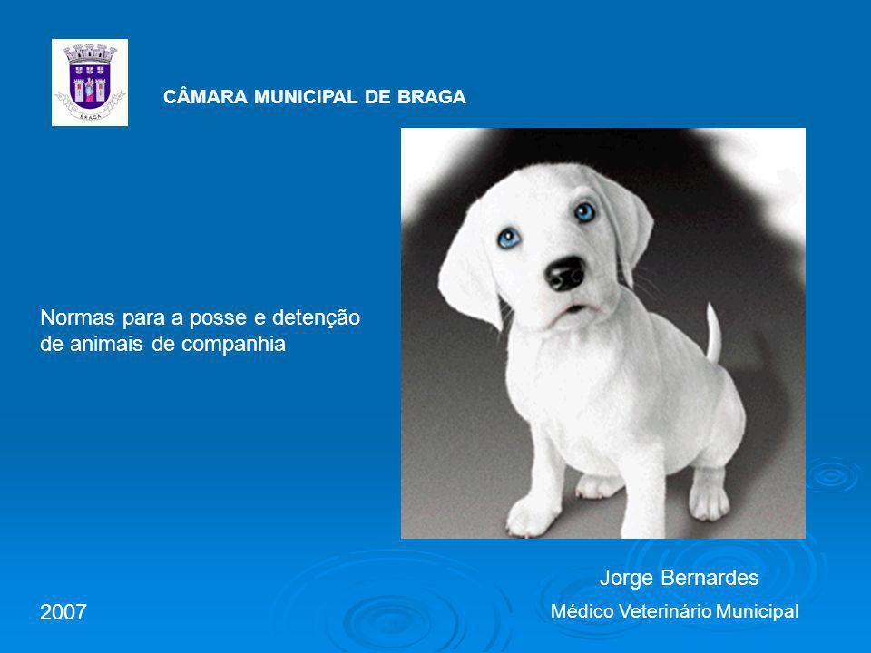 Normas para a posse e detenção de animais de companhia