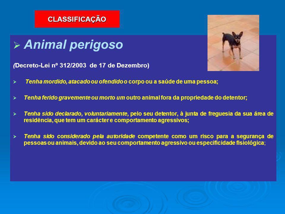 Animal perigoso CLASSIFICAÇÃO