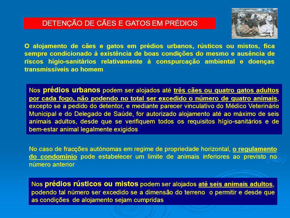 DETENÇÃO DE CÃES E GATOS EM PRÉDIOS