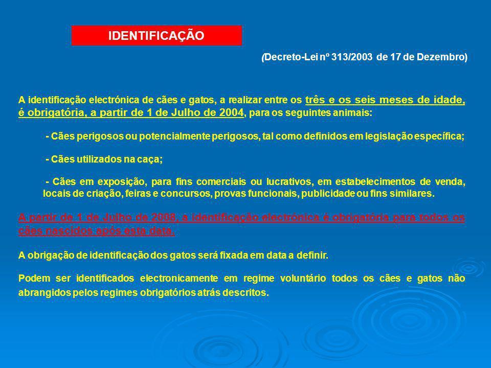 (Decreto-Lei nº 313/2003 de 17 de Dezembro)