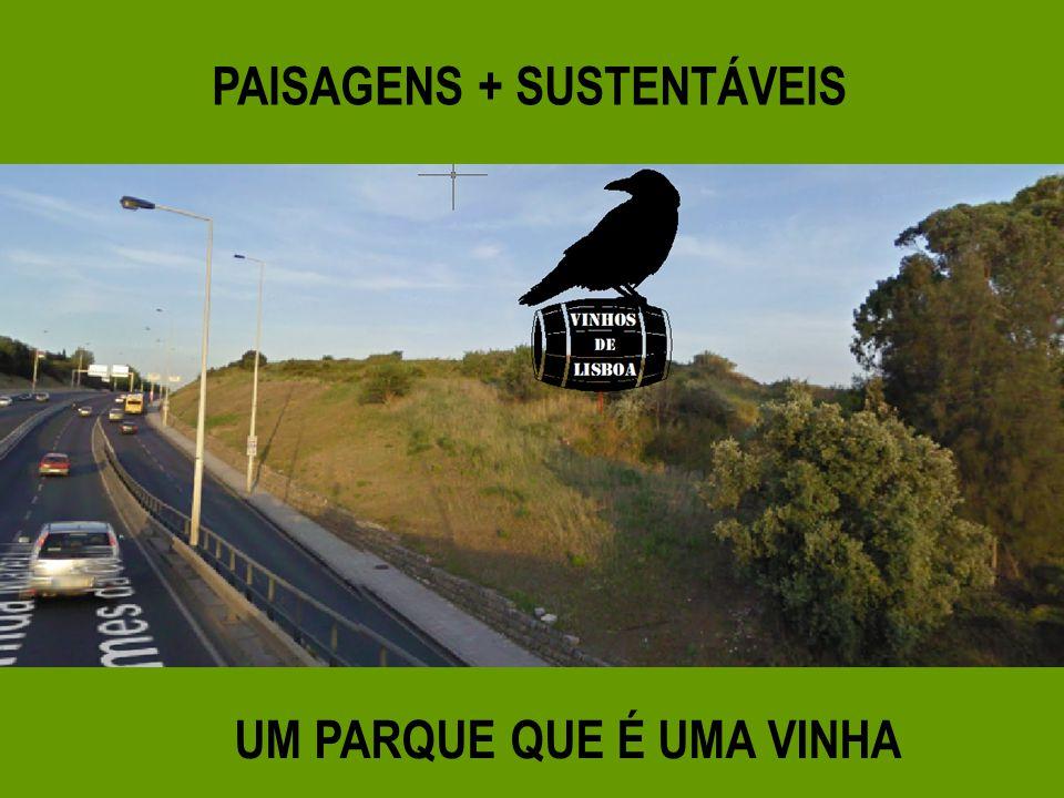 PAISAGENS + SUSTENTÁVEIS UM PARQUE QUE É UMA VINHA