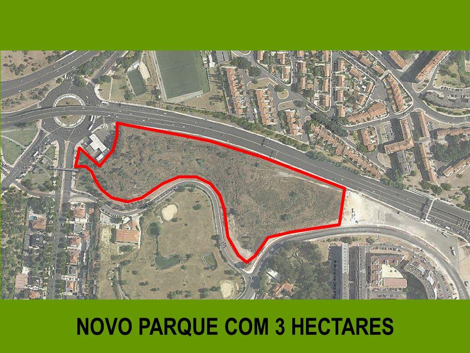 NOVO PARQUE COM 3 HECTARES