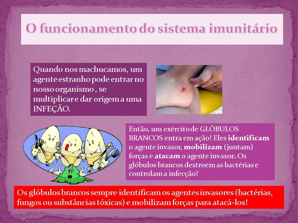 O funcionamento do sistema imunitário