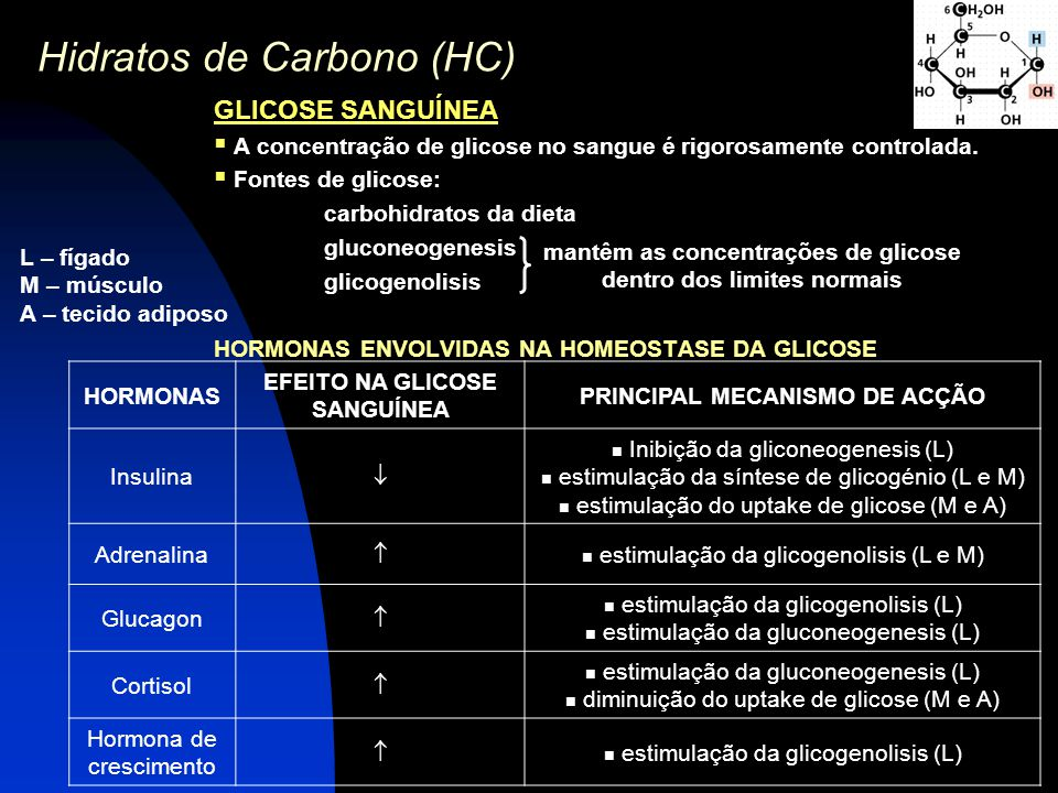 Hidratos de Carbono (HC)
