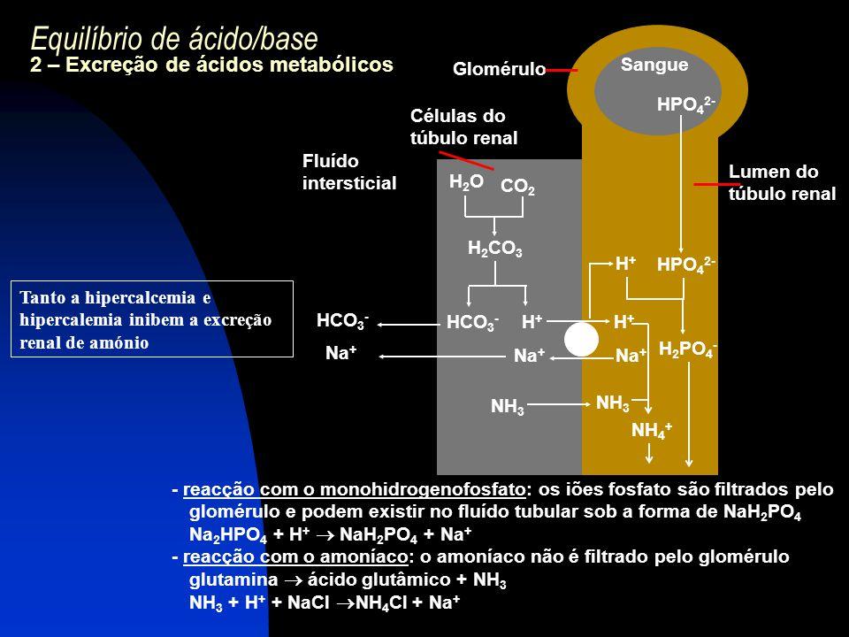 Equilíbrio de ácido/base 2 – Excreção de ácidos metabólicos