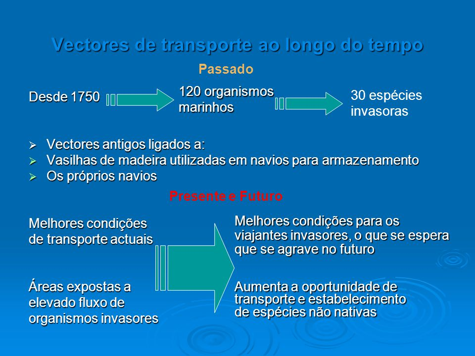 Vectores de transporte ao longo do tempo