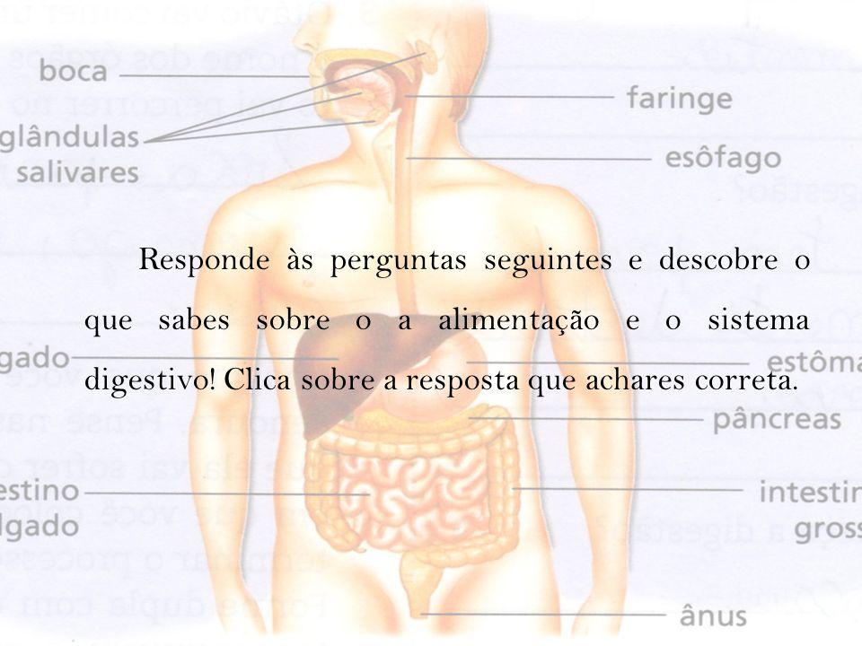 Responde às perguntas seguintes e descobre o que sabes sobre o a alimentação e o sistema digestivo.