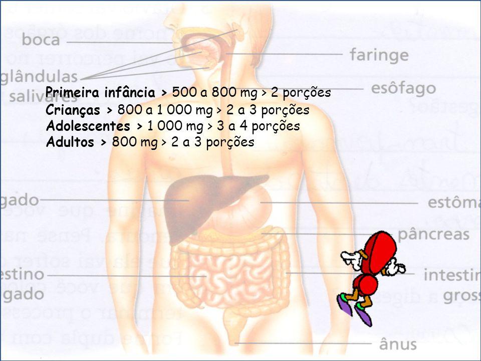 Primeira infância > 500 a 800 mg > 2 porções Crianças > 800 a 1 000 mg > 2 a 3 porções Adolescentes > 1 000 mg > 3 a 4 porções Adultos > 800 mg > 2 a 3 porções