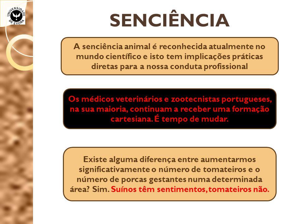 SENCIÊNCIA A senciência animal é reconhecida atualmente no mundo científico e isto tem implicações práticas diretas para a nossa conduta profissional.