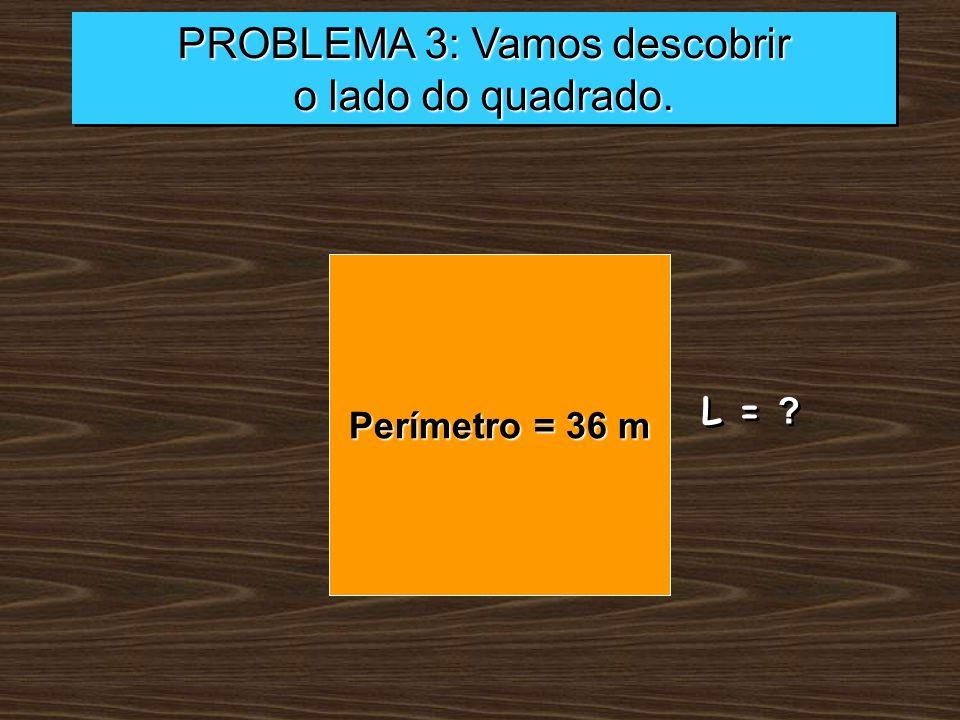 PROBLEMA 3: Vamos descobrir
