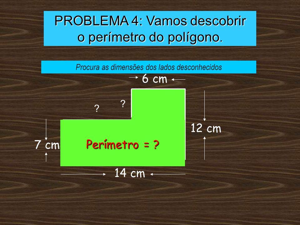 PROBLEMA 4: Vamos descobrir o perímetro do polígono.
