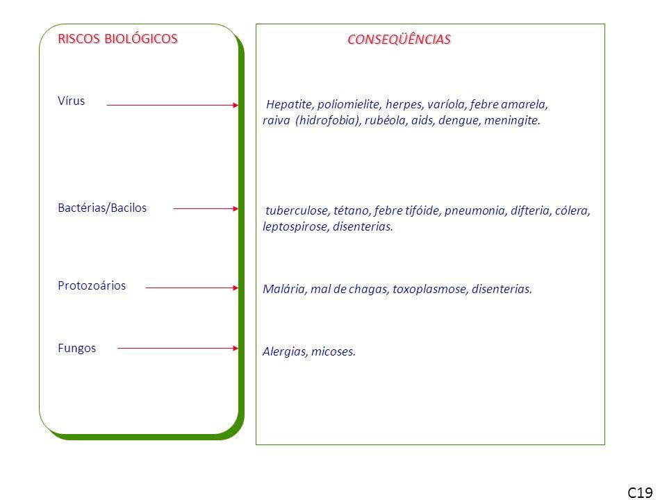 C19 RISCOS BIOLÓGICOS CONSEQÜÊNCIAS