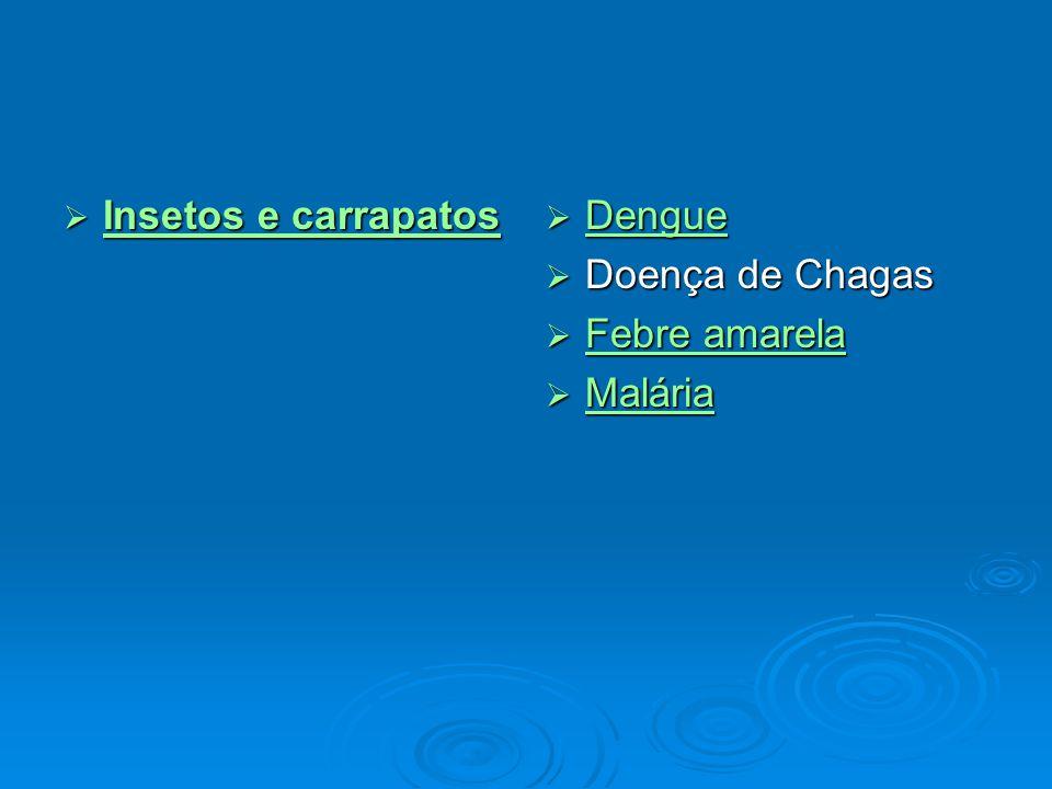 Insetos e carrapatos Dengue Doença de Chagas Febre amarela Malária