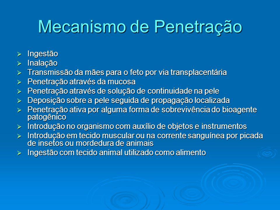 Mecanismo de Penetração