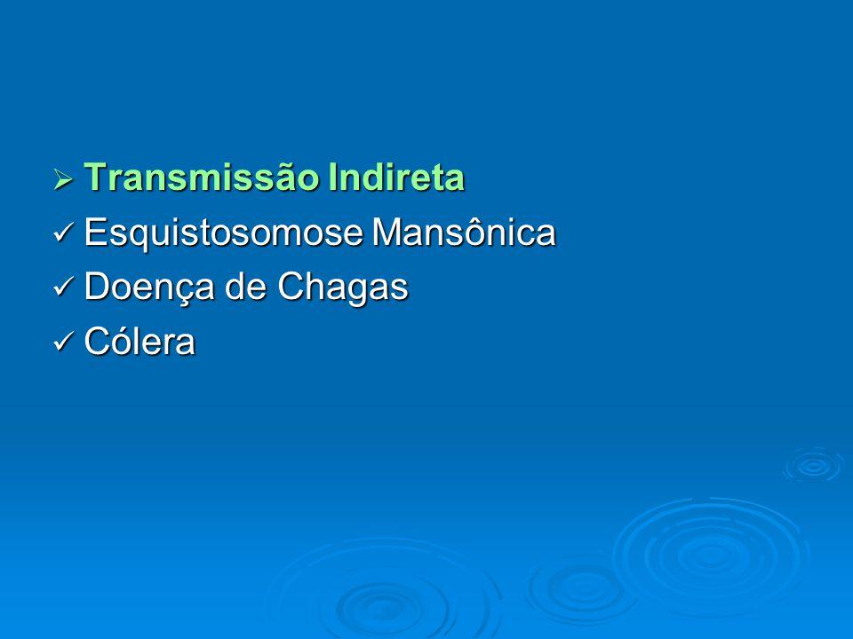 Transmissão Indireta Esquistosomose Mansônica Doença de Chagas Cólera