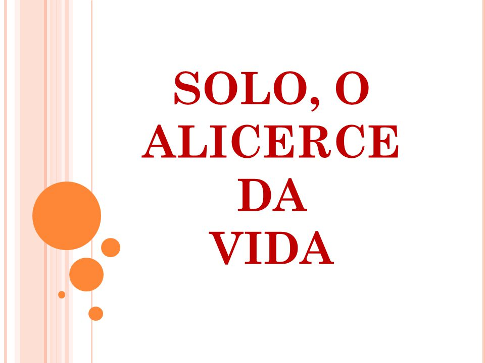 SOLO, O ALICERCE DA VIDA