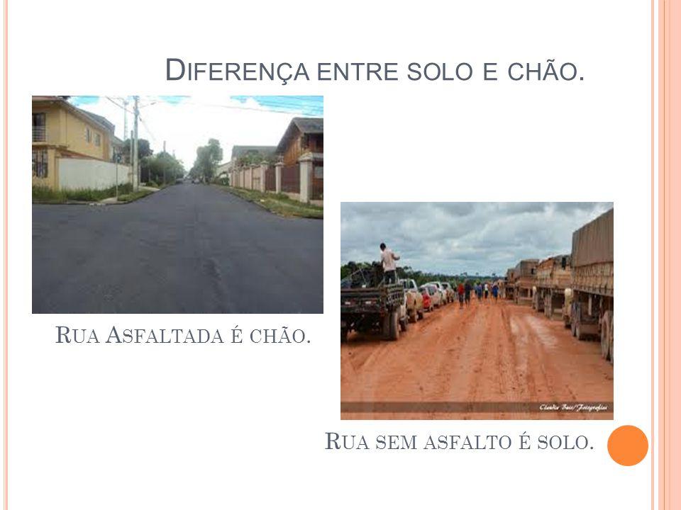 Diferença entre solo e chão.