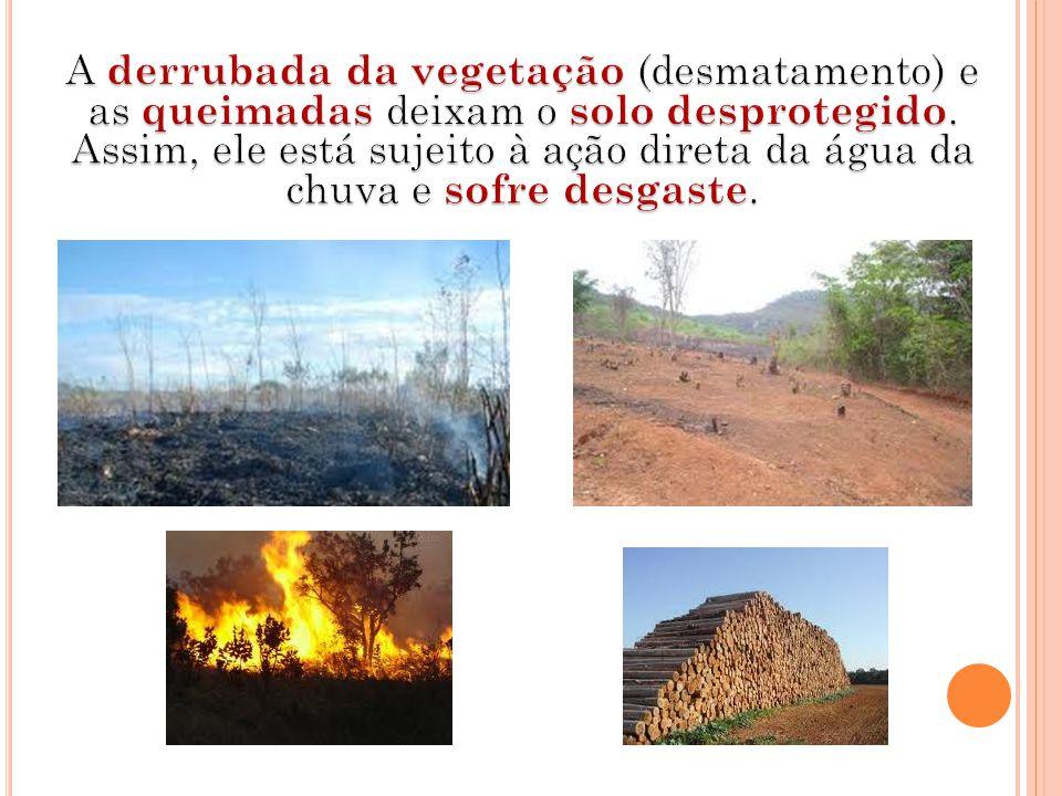 A derrubada da vegetação (desmatamento) e as queimadas deixam o solo desprotegido.