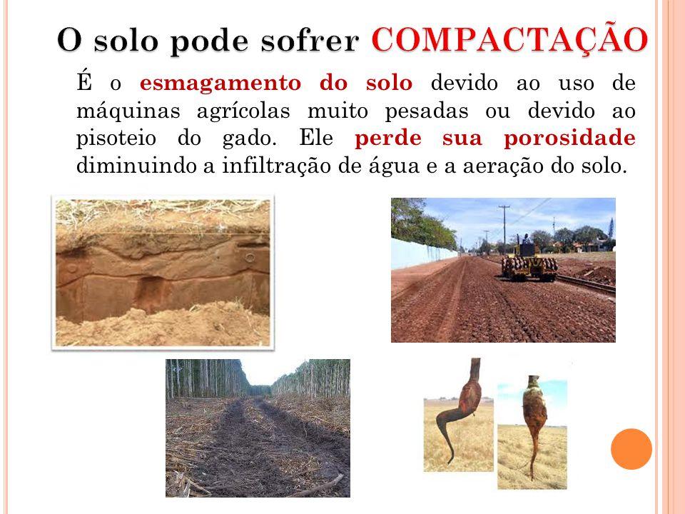 O solo pode sofrer COMPACTAÇÃO