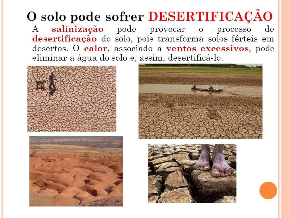 O solo pode sofrer DESERTIFICAÇÃO