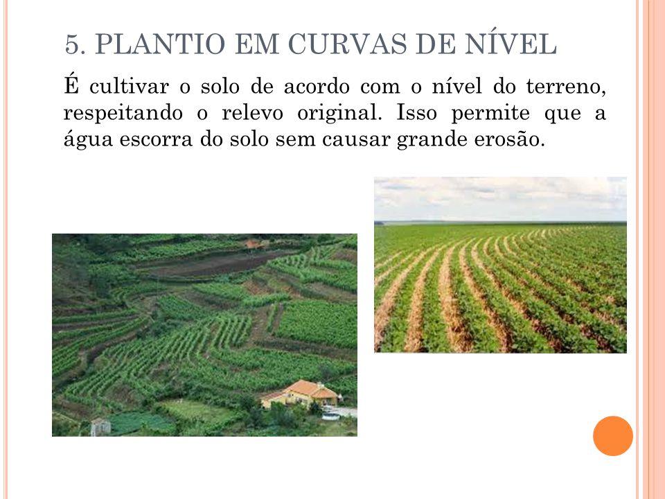 5. PLANTIO EM CURVAS DE NÍVEL