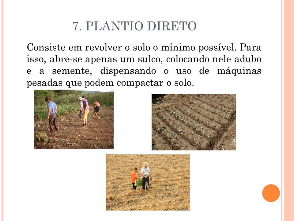 7. PLANTIO DIRETO
