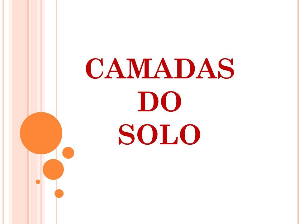 CAMADAS DO SOLO