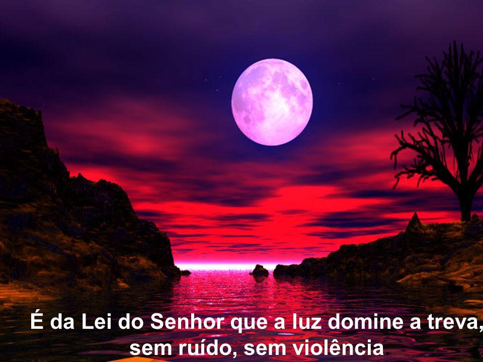 É da Lei do Senhor que a luz domine a treva, sem ruído, sem violência.