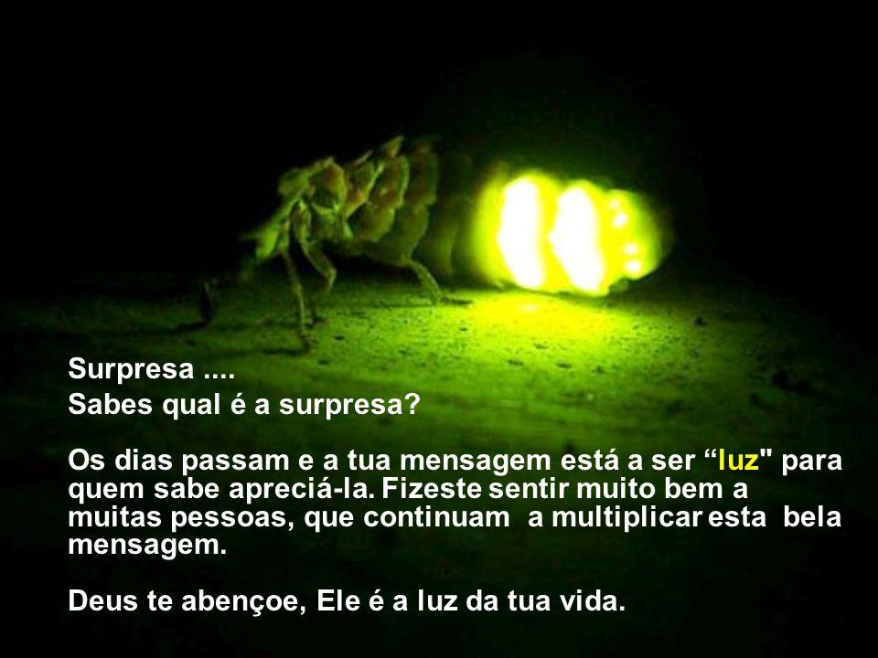 Surpresa ....