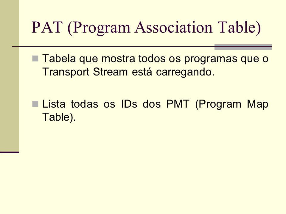 PAT (Program Association Table)