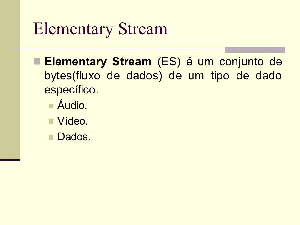 Elementary Stream Elementary Stream (ES) é um conjunto de bytes(fluxo de dados) de um tipo de dado específico.