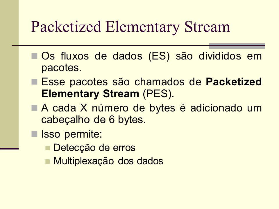 Packetized Elementary Stream