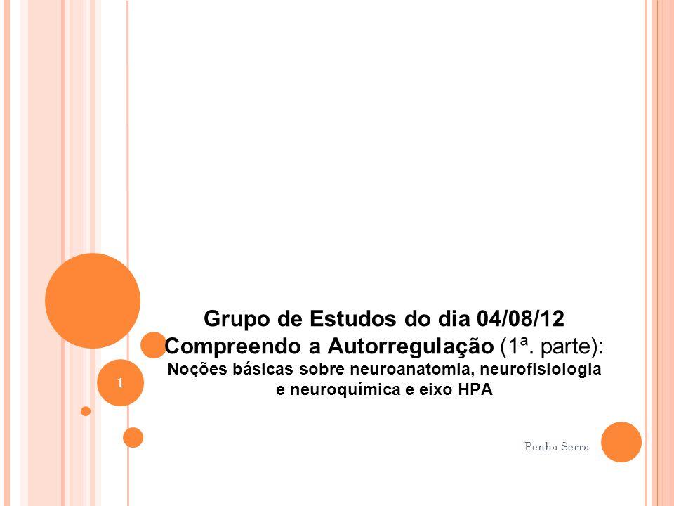 Grupo de Estudos do dia 04/08/12 Compreendo a Autorregulação (1ª