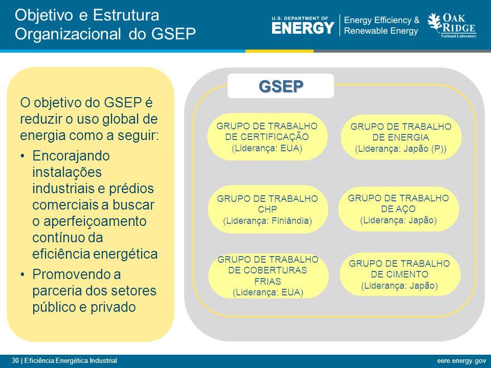 Objetivo e Estrutura Organizacional do GSEP