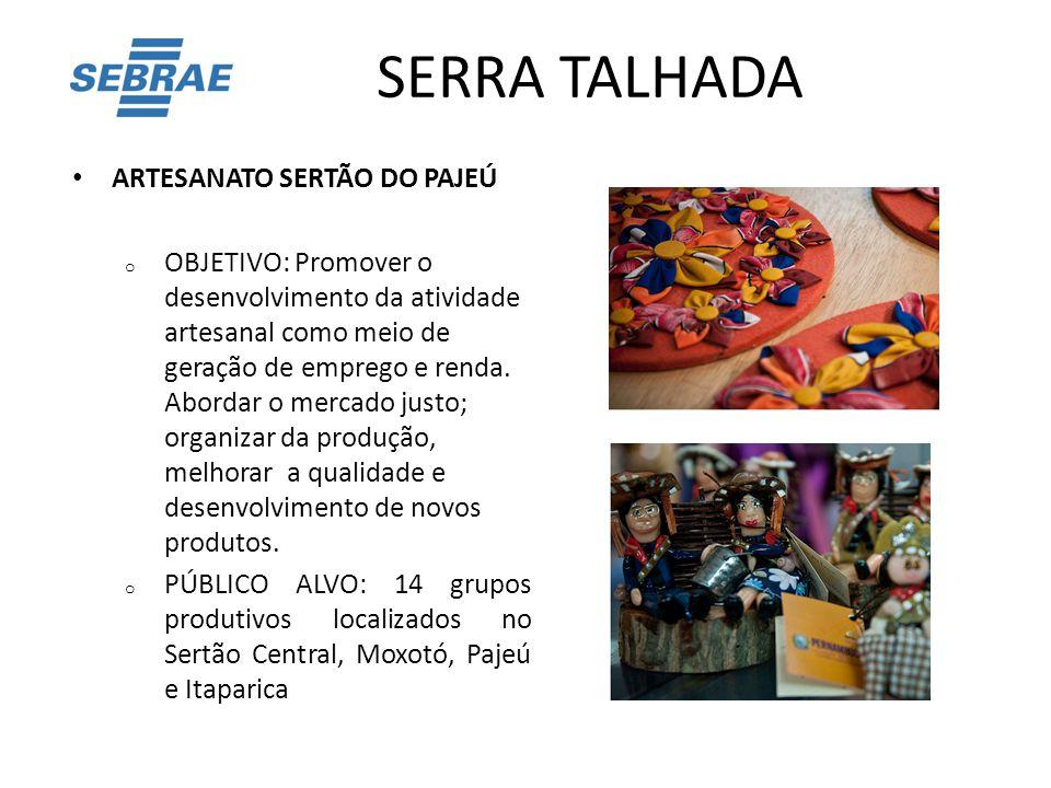 SERRA TALHADA ARTESANATO SERTÃO DO PAJEÚ
