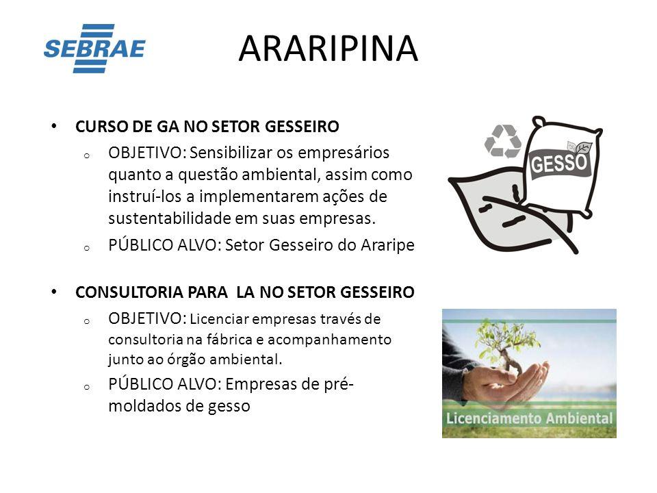 ARARIPINA CURSO DE GA NO SETOR GESSEIRO