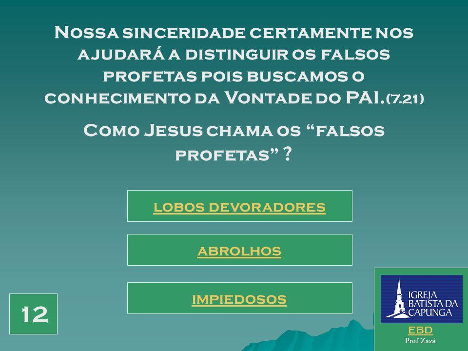 Como Jesus chama os falsos profetas