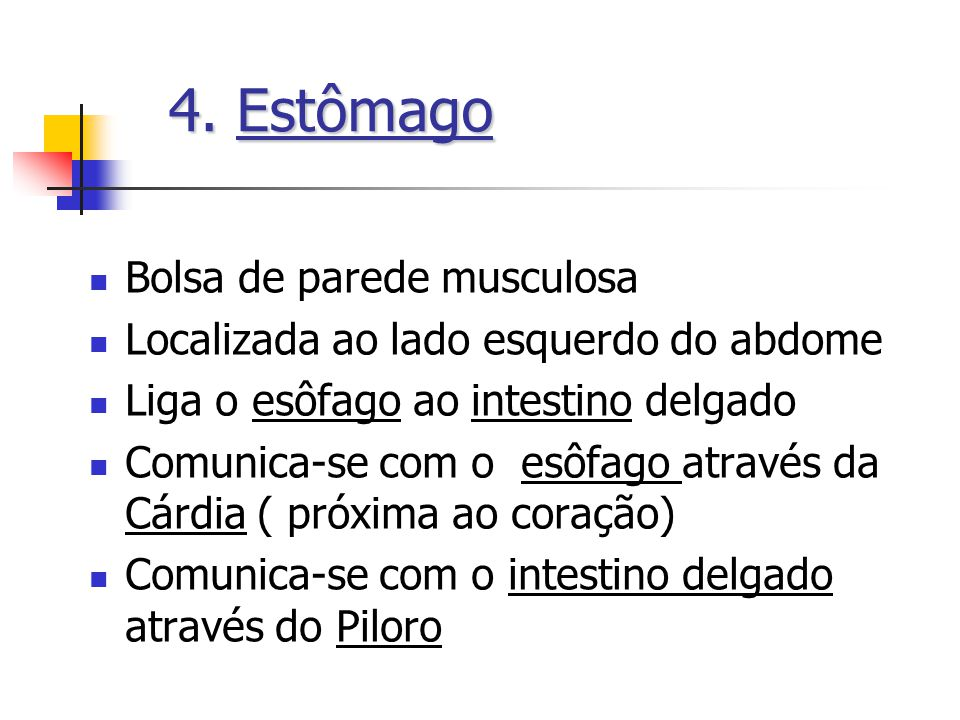 4. Estômago Bolsa de parede musculosa