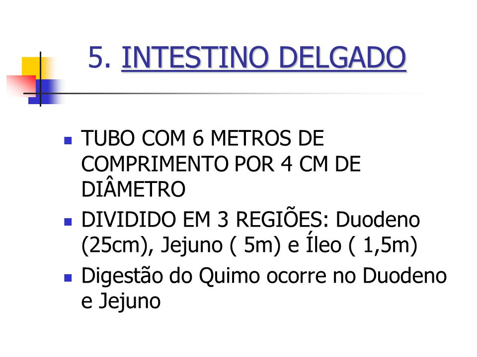 5. INTESTINO DELGADO TUBO COM 6 METROS DE COMPRIMENTO POR 4 CM DE DIÂMETRO. DIVIDIDO EM 3 REGIÕES: Duodeno (25cm), Jejuno ( 5m) e Íleo ( 1,5m)