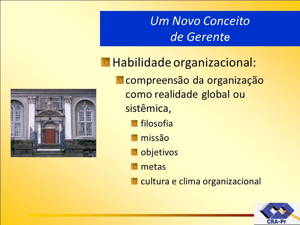 Habilidade organizacional: