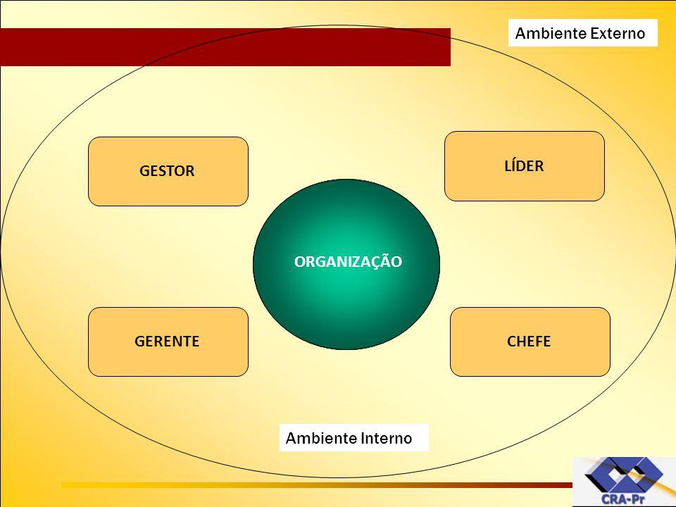 Organização Ambiente Externo LÍDER GESTOR ORGANIZAÇÃO GERENTE CHEFE