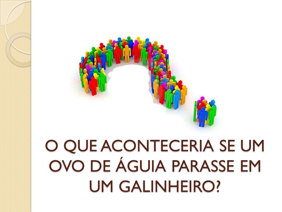 O QUE ACONTECERIA SE UM OVO DE ÁGUIA PARASSE EM UM GALINHEIRO